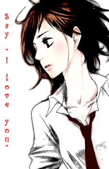 Sukitte Ii na yo: Dareka ga / Скажи: «Я люблю тебя» OVA