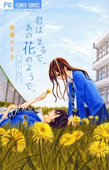 Kimi wa Maru de Ano Hana no You de / Ты похожа на цветок