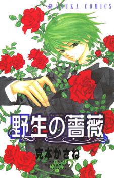 Yasei no Bara / Дикая роза