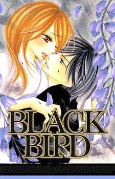 Black Bird / Черная птица